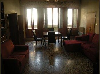 offro in affitto appartamento grande  ben servito in zona...