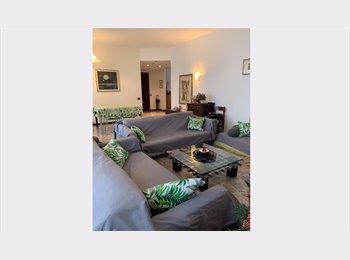 Free room in a very nice flat 2mins to the center