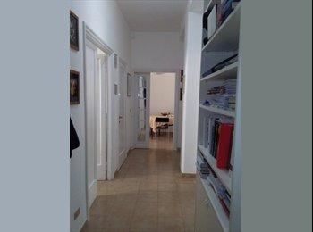 camera 22 mqzona Prati-Clodio