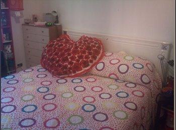 EasyStanza IT - stanza matrimoniale uso singola con bagno personale/Metro B, Tiburtino-Collatino - € 450 al mese