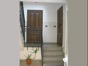in appartamento affittasi stanze singole arredate