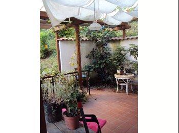 Ampia Stanza Singola in appartamento con giardino