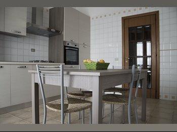 Appartamento in affinto