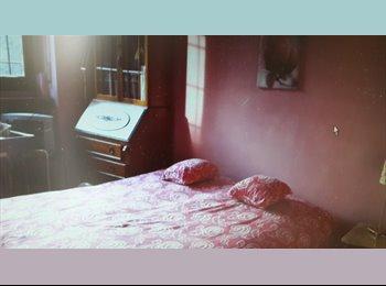 2 camere singole + 1 posto letto