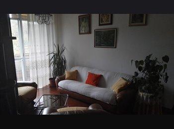 Affittasi appartamento in condivisione