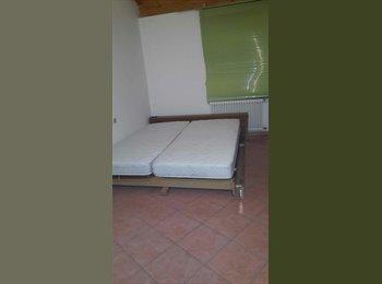 EasyStanza IT - Affitto stanza singola ampia - Bolzano, Bolzano - € 500 al mese
