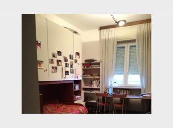 stanza doppia in centro Pavia per studenti