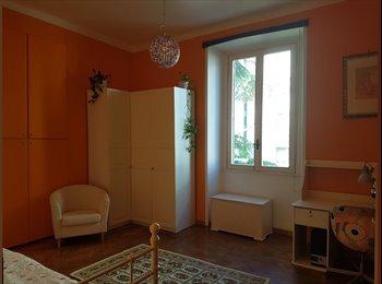 1 stanza in affitto quartiere parioli Roma