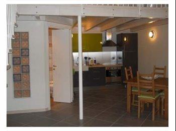 EasyStanza IT - ampio monolocale in affitto, Parma - € 550 al mese