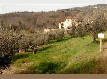 EasyStanza IT - Camera doppia in collina a due passi dalla città, Provincia di Pistoia - € 450 al mese