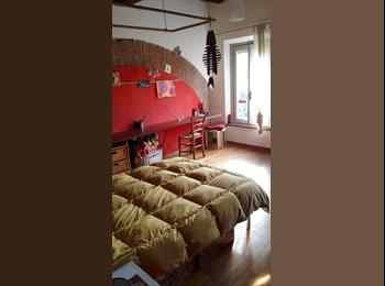 affitto ampie stanze singole