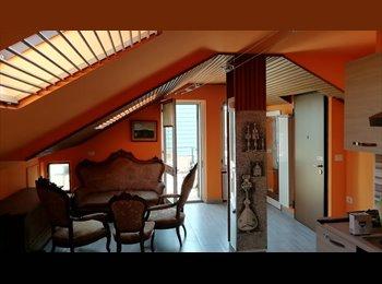 Stanze in NUOVO appartamento