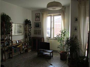 3 CAMERE SINGOLE in affitto in appartamento (zona Porta a...