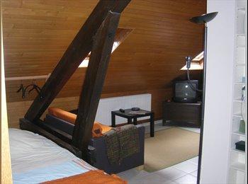Möblierte 1Z-Wohnung/furnished studio appartment
