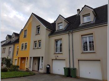 Appartager LU - Chambre meublee avec tout le comfort + WIFI dans maison avec jardin à 17 km. de Luxembourg ville- - Esch-Alzette, Luxembourg - 510 € / Mois