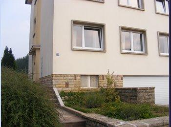 Appartager LU - Une chambre à Cessange - Luxembourg Ville, Luxembourg - 650 € / Mois
