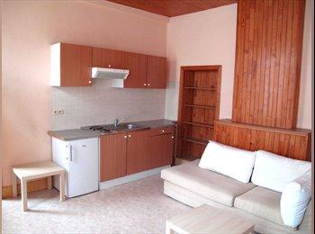 Appartager LU - Arlon loue studio petit appartement - Arlon, Luxembourg - 400 € / Mois