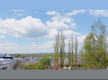 Appartager LU - A 2 PAS DE LA CLOCHE D'OR  A LOUER BELLE CHAMBRE MEUBLEE - Luxembourg Ville, Luxembourg - 720 € / Mois