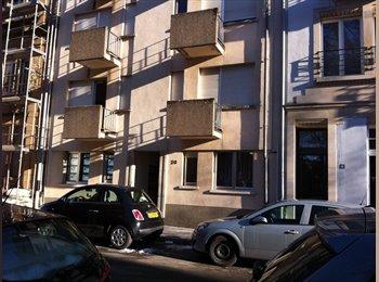 Appartager LU - Studio meublé à louer Luxembourg - Limpertsberg - Luxembourg Ville, Luxembourg - 850 € / Mois