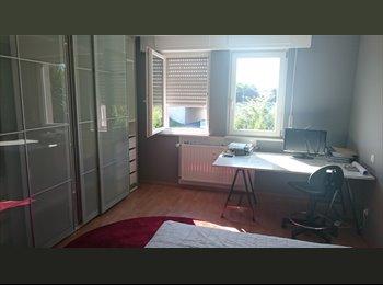 Chambre d'étudiant nouvellement aménagée+ SDD privative.