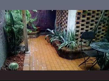 Buscamos roomie para linda casa en Coyoacán