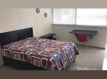 CompartoDepa MX - Suites amuebladas, con servicios y excelente ubicación (La Paz, Puebla) - La Paz, Puebla - MX$3,500 por mes