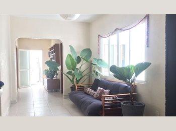 Rento increible habitacion con baño propio en el centro de...