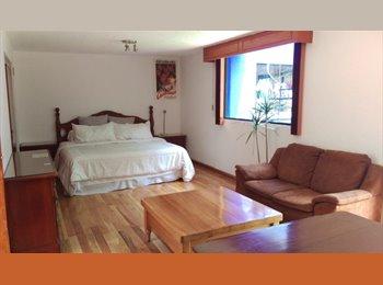 CompartoDepa MX - Cuarto con jardín en hermosa casa en coyoacán!! - Coyoacán, DF - MX$6,800 por mes