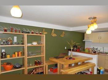 Rento habitacion amueblada en Sn Pedro d los Pinos