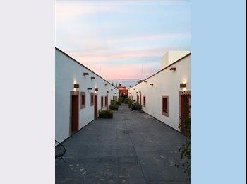 Private room in downtown Queretaro