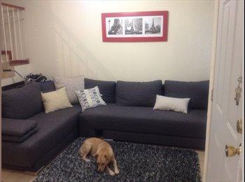 Te gustan los perros y buscas un lugar tranquilo?
