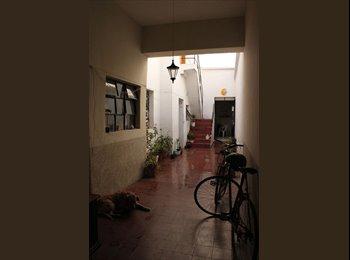 CompartoDepa MX - buscamos roomie casaperroblanco! Hospitaly enrique - Guadalajara, Guadalajara - MX$2,700 por mes