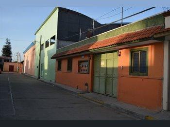 CompartoDepa MX - RENTA DEPARTAMENTO CHICO STA ROSA, Oaxaca de Juárez - MX$3,000 por mes
