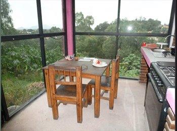 CompartoDepa MX - Estudio con amplio jardín. A una cuadra del Museo Dolores Olmedo. - Xochimilco, DF - MX$5,000 por mes