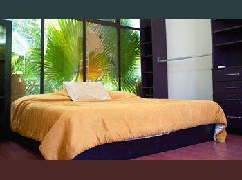 CompartoDepa MX - Hemosa Habitación en Casa llena de Naturaleza, DF - MX$5,700 por mes