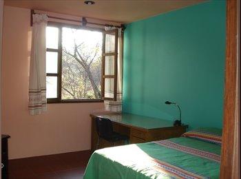 CompartoDepa MX - COMFORTABLE ROOM FOR RENT, Oaxaca de Juárez - MX$2,600 por mes