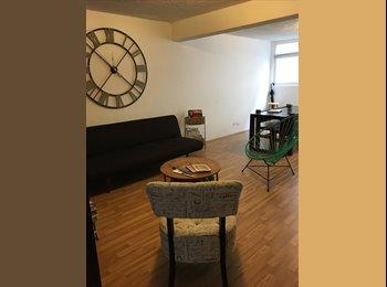 CompartoDepa MX - Bonito departamento en la Condesa, Ciudad de México - MX$6,000 por mes