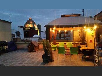 Amplia habitación en Hermoso Penthouse con terraza