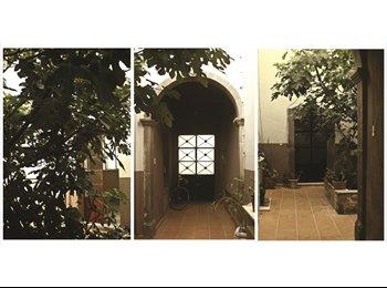 CompartoDepa MX - Casa Higo en el Centro Histórico, San Luis Potosí - MX$2,300 por mes