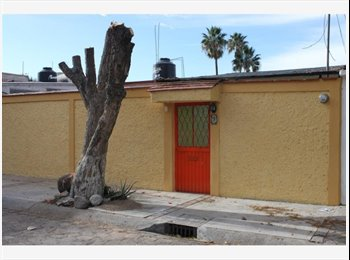 CompartoDepa MX - Habitación con acceso privado en Arboledas, Querétaro - MX$2,200 por mes