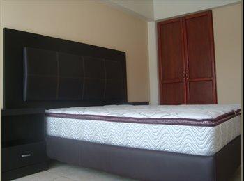 CompartoDepa MX - Comparto departamento en excelente Zona, Xalapa Enríquez - MX$2,900 por mes
