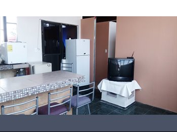 Habitaciones compartidas para chicas camas Duplex