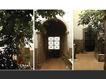 Casa Higo en el Centro Histórico