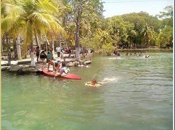CompartoDepa MX - Alexsander - 37 - Campeche
