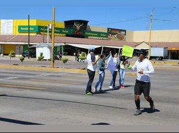 CompartoDepa MX - Jorge de la Garza - 33 - Aguascalientes