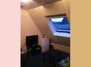 mooie kamer in gezellig studentenhuis in Eindhoven