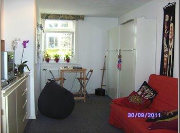 EasyKamer NL - Studio Appartement  Belgisch Park - Scheveningen, Den Haag - € 820 p.m.