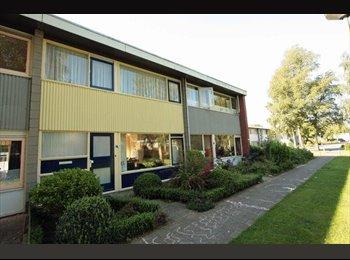 EasyKamer NL - Nice room for rent in Emmen - Emmen, Emmen - € 340 p.m.
