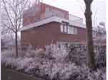 EasyKamer NL - Kamer in  Lelystad, 2 min lopen van station - Lelystad, Lelystad - € 255 p.m.