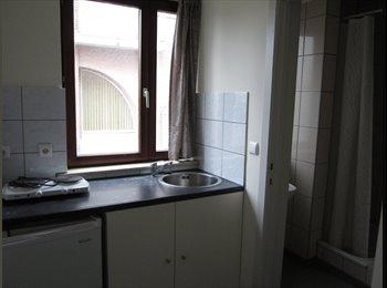 EasyKamer NL - studio - Buitenwijk Zuid-West, Maastricht - € 450 p.m.